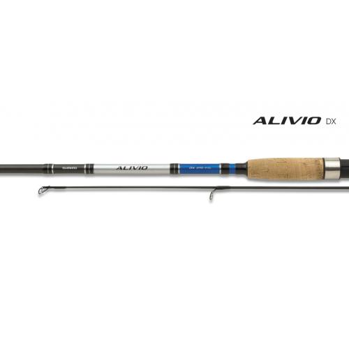 Spiningas Shimano Alivio DX 210